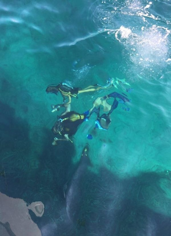 Solo diving training