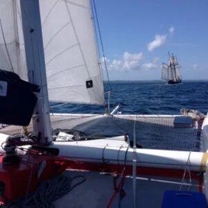 stage découverte voile catamaran